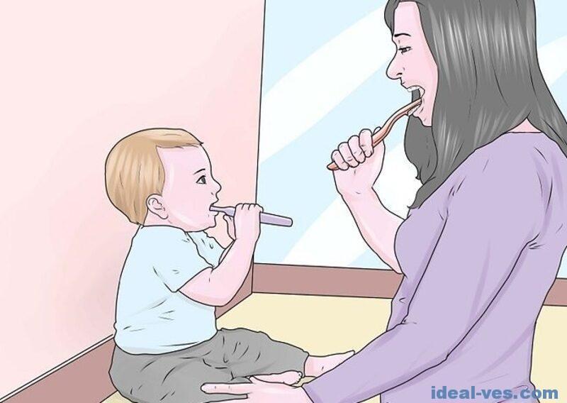 Зубы нужно чистить после каждого приема пищи
